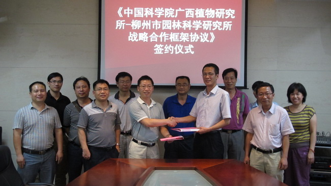 Guangxi institute of botany and liuzhou landscape science research institute signed a strategic cooperation framework agreement